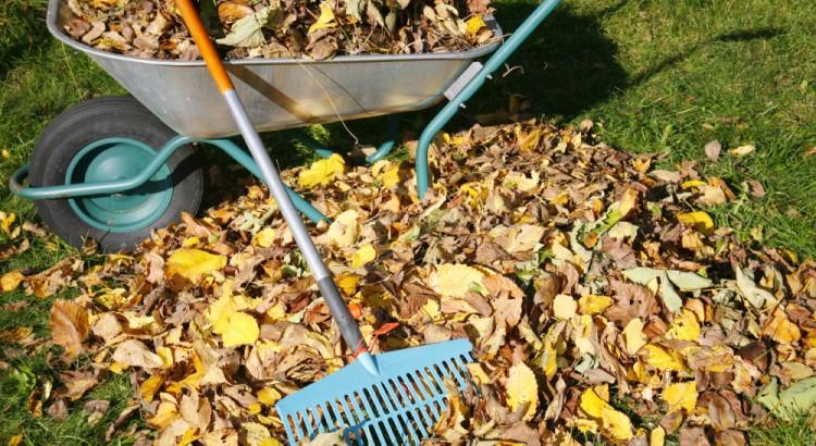 почистване на дворове